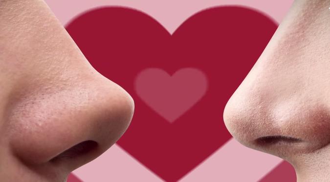 ¿Cómo funciona el olfato en el enamoramiento?